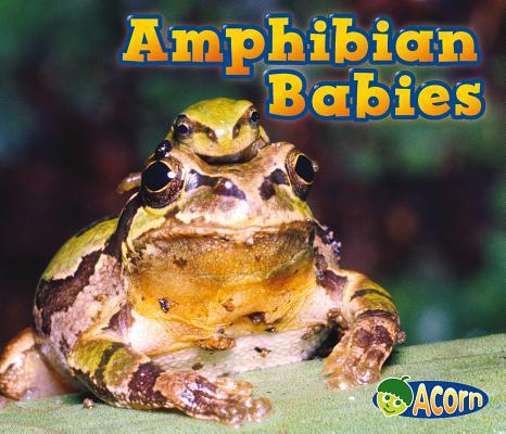 Amphibian Babies By Veitch, Catherine